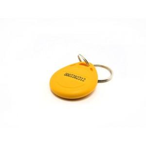 EM4100 125KHz RFID Key Tag