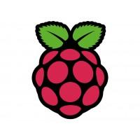 Raspberry Pi® - Sticker